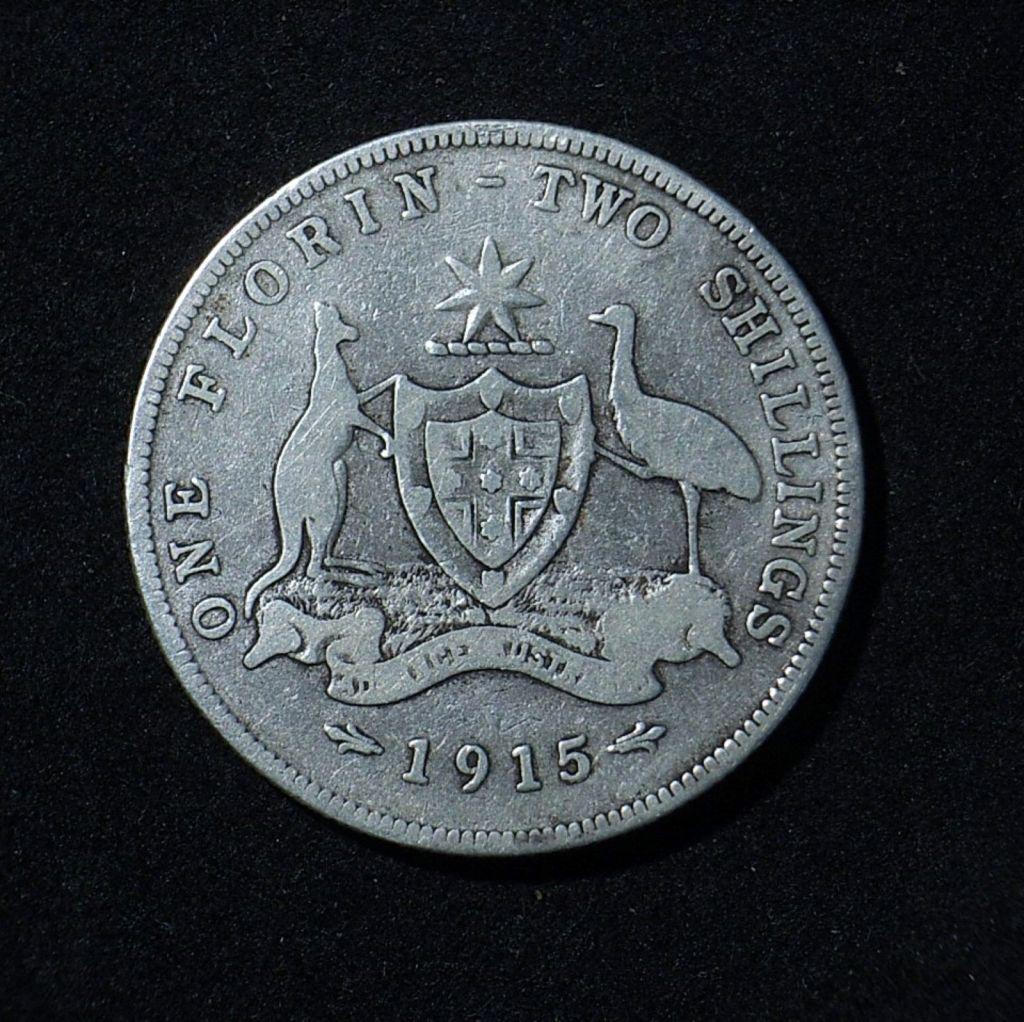 1915 Florin reverse in VG