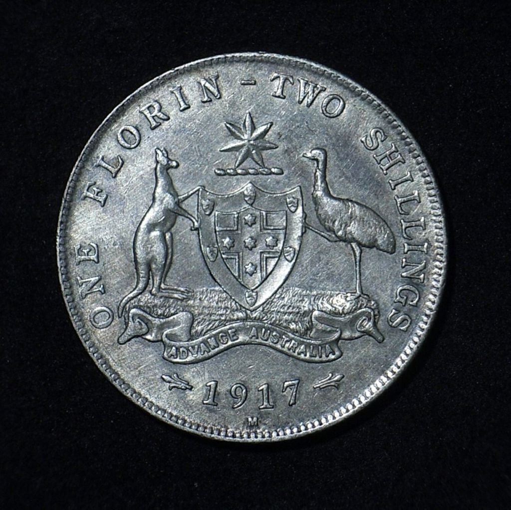 1917M Florin reverse in EF