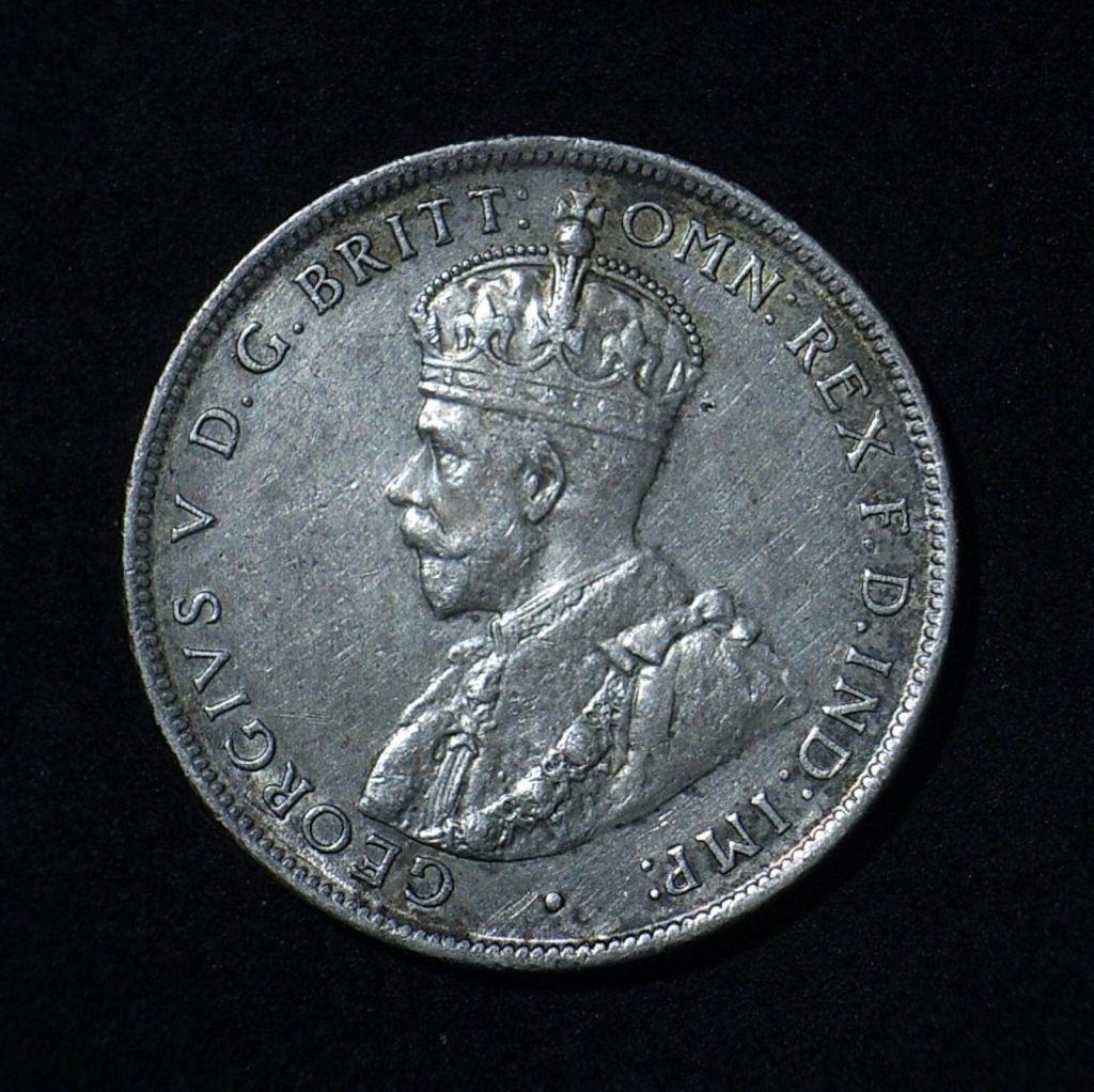 1917M Florin obverse in EF