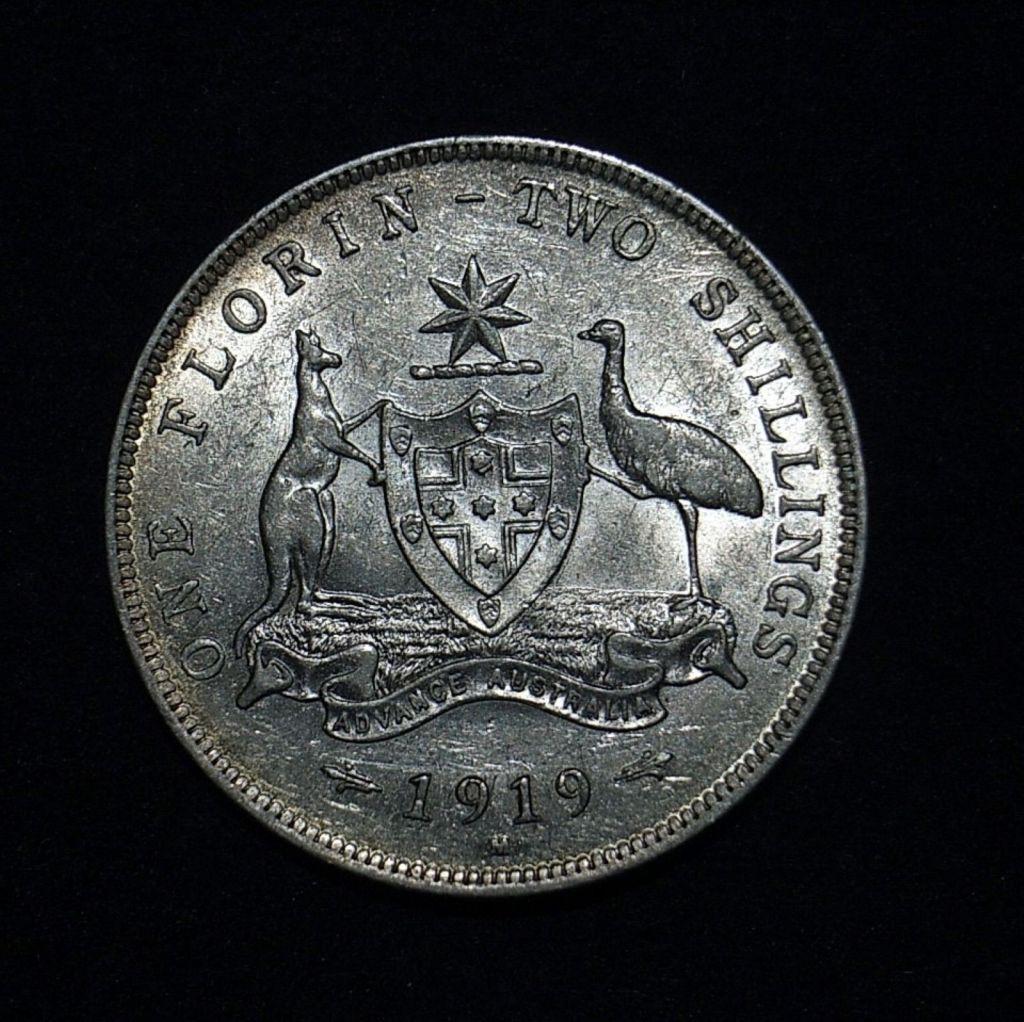 1919M Florin reverse in aEF
