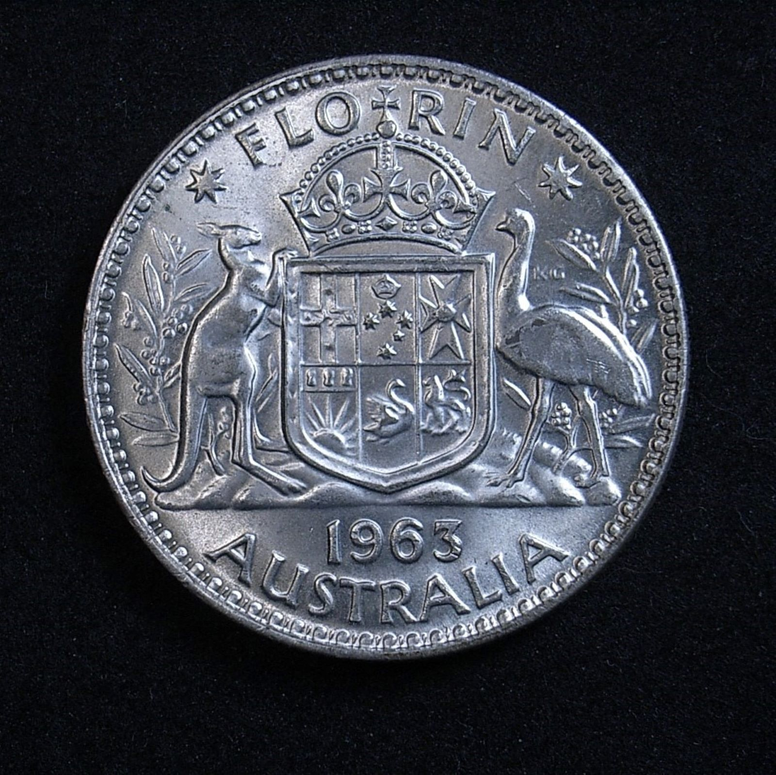 Close up Aussie florin 1963 reverse, new light angle highlighting the coin's detail