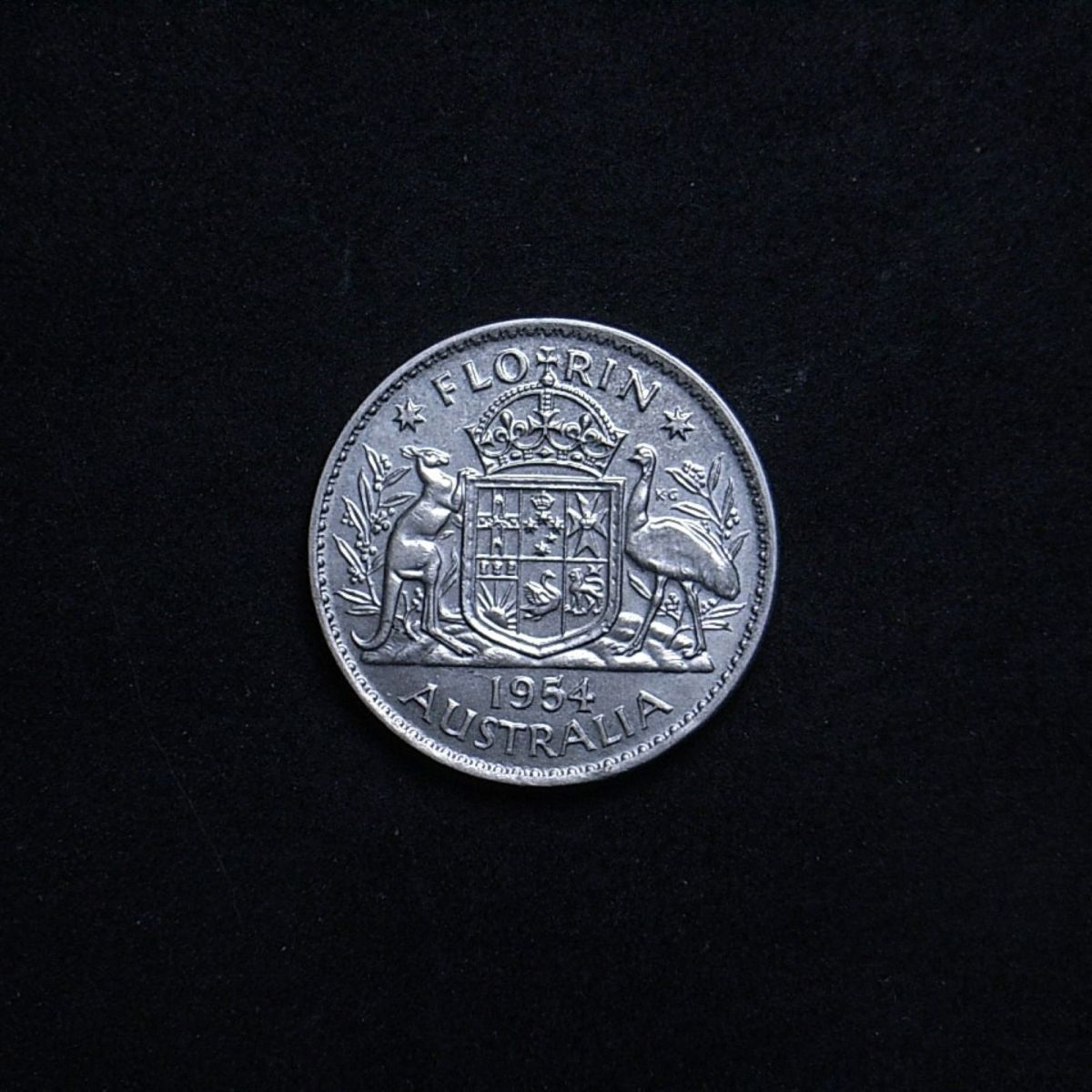 Aussie 1954 florin reverse showing lustre on the coin