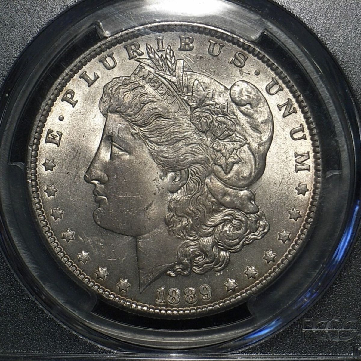 US Morgan Dollar 1889-P close up showing good detail and lustre on the coin