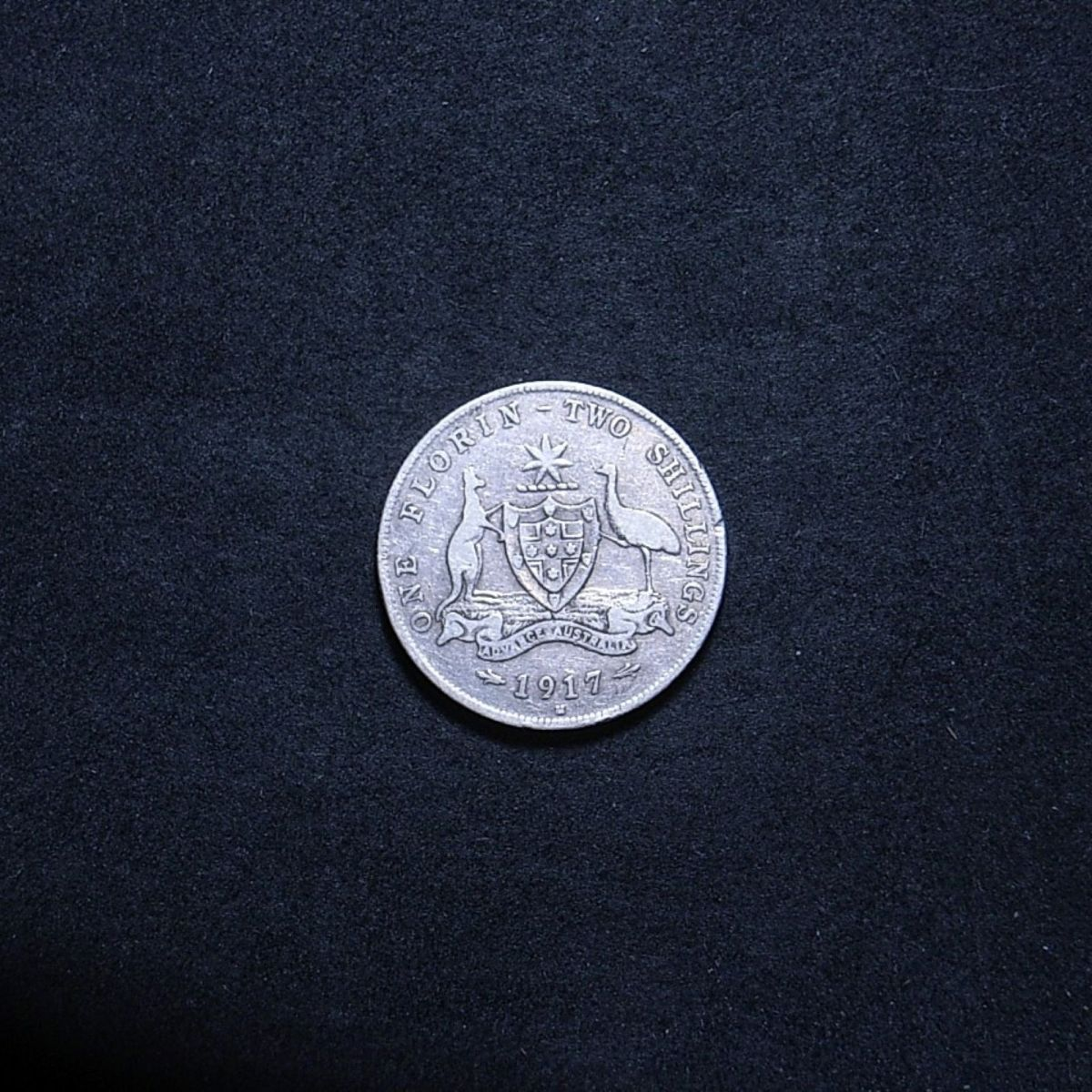 Aussie 1917M florin reverse showing overall appearance