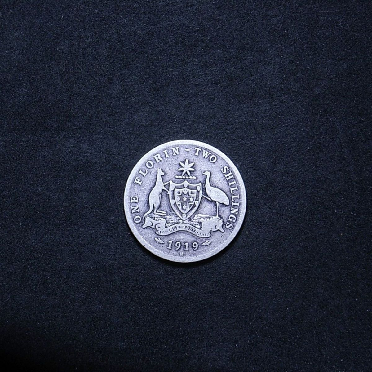 Aussie 1919M florin reverse showing overall appearance