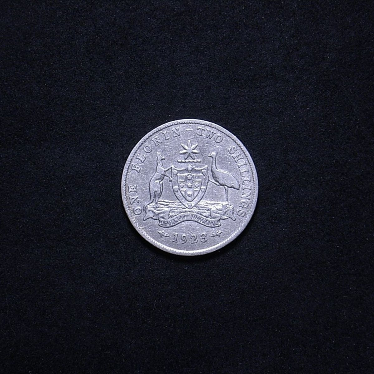 1923 florin reverse showing the coin's overall appearance to be quite worn