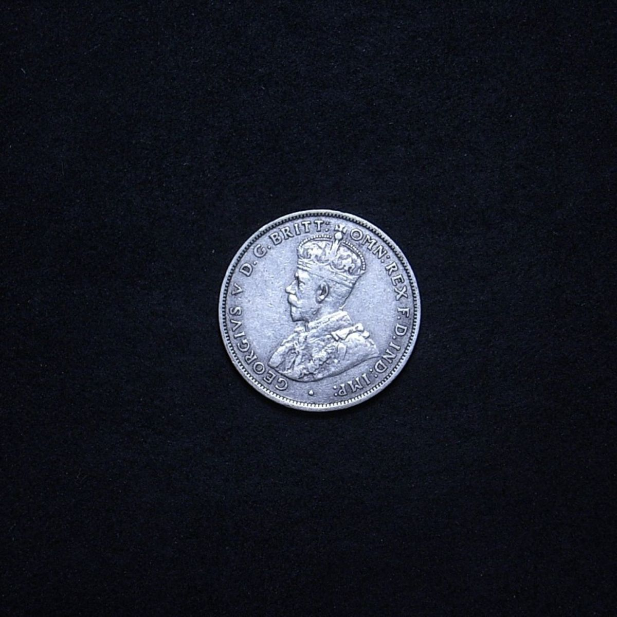 Aussie 1928 florin obverse showing overall appearance of the coin