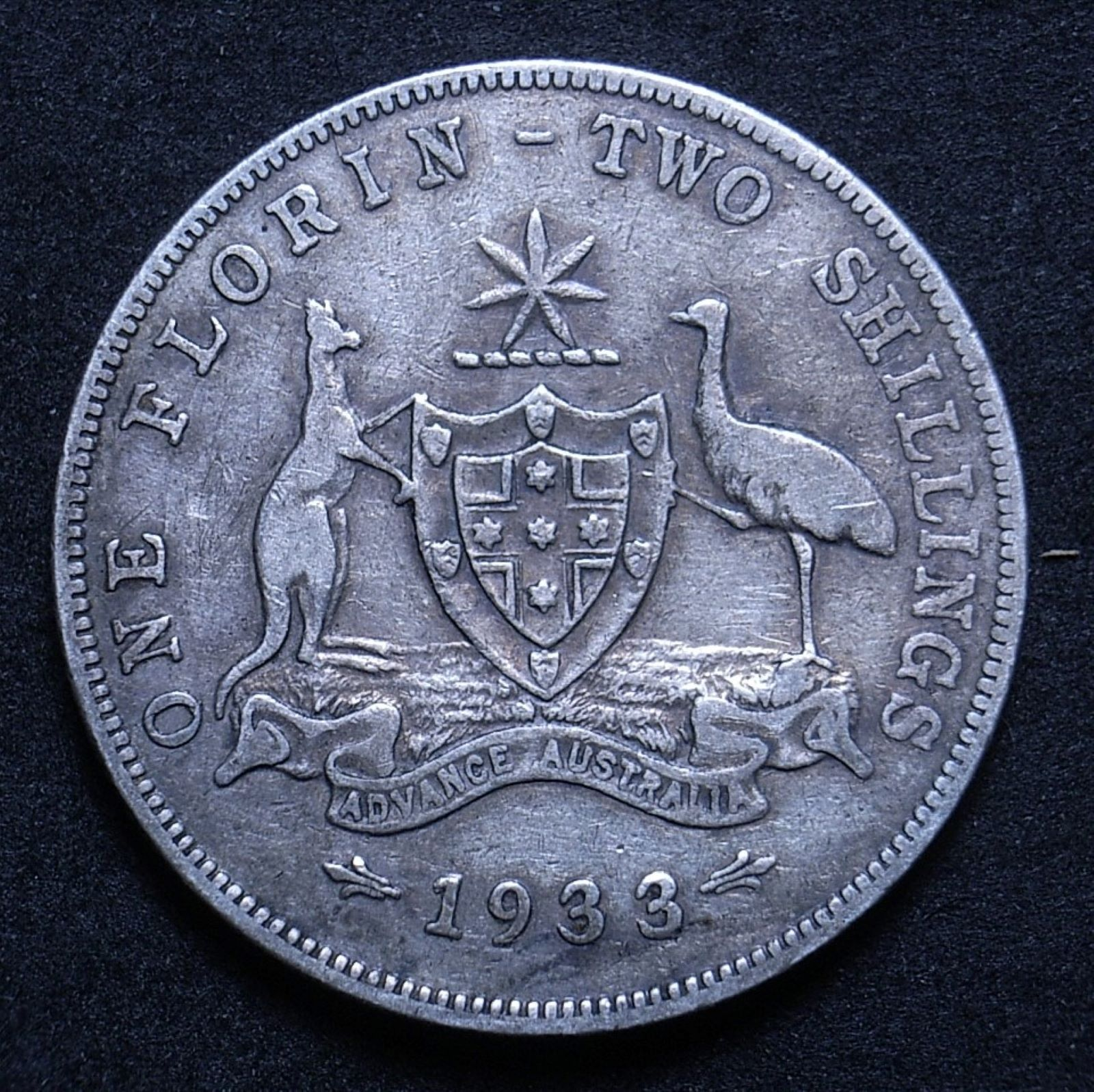 Close up of 1933 florin reverse showing the coin's detail