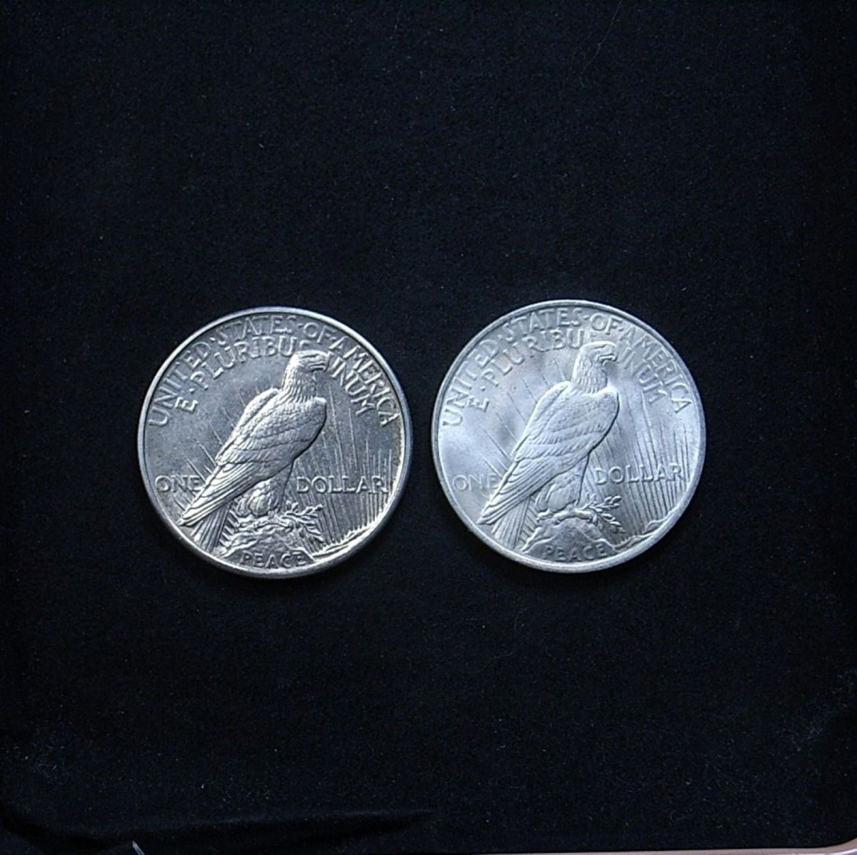 Comparison of relief on US 1921 vs 1923 Peace dollar reverse, highlighting lustre on the coins
