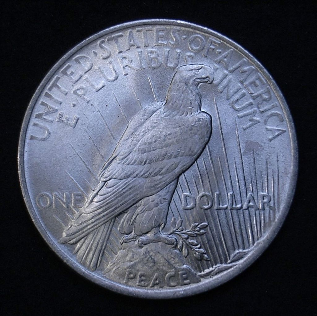 Close up US Peace Dollar 1923-P reverse showing detail