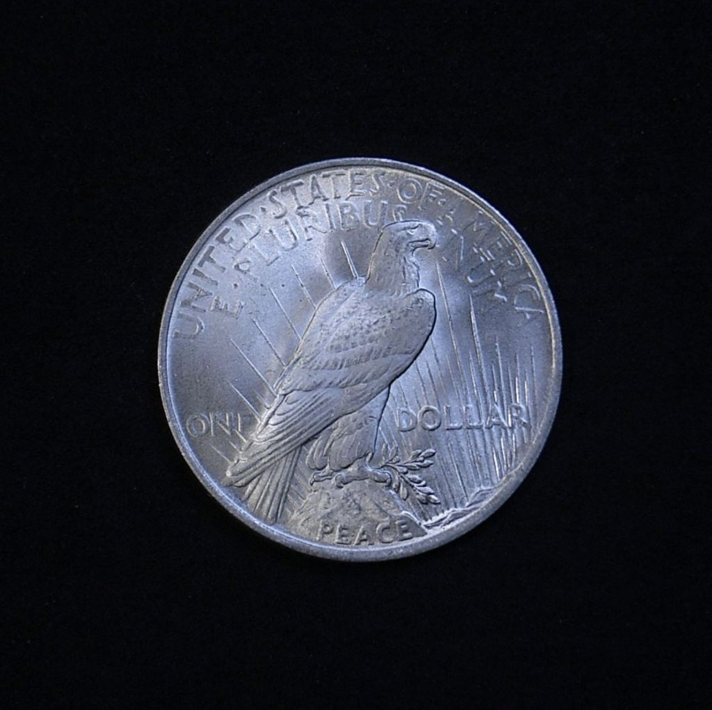 US Peace Dollar 1923-P reverse showing overall appearance