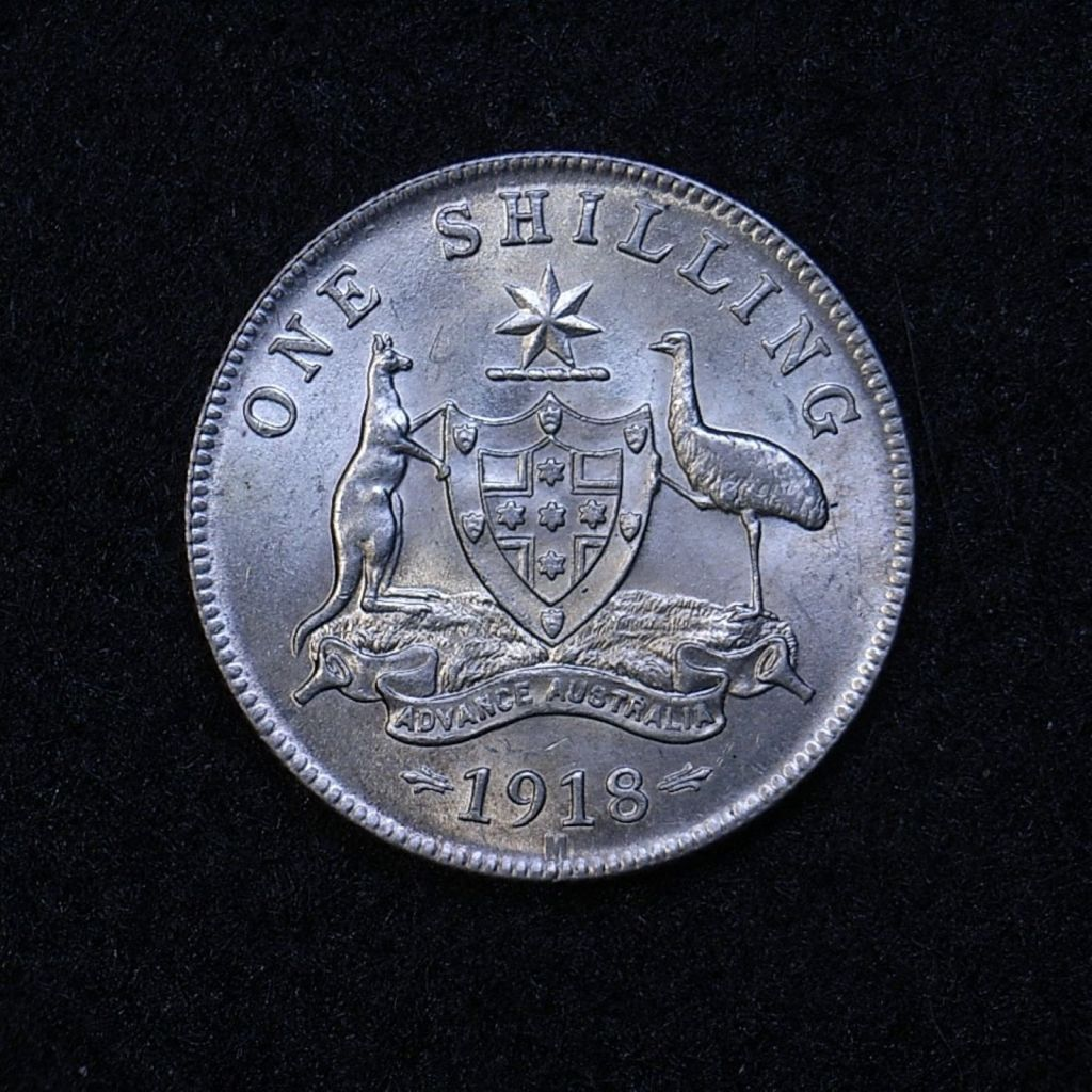 Close up Aus Shilling 1918m reverse showing detail