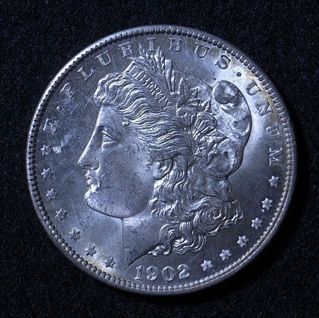 Close up US Morgan Dollar 1902-O obverse showing detail