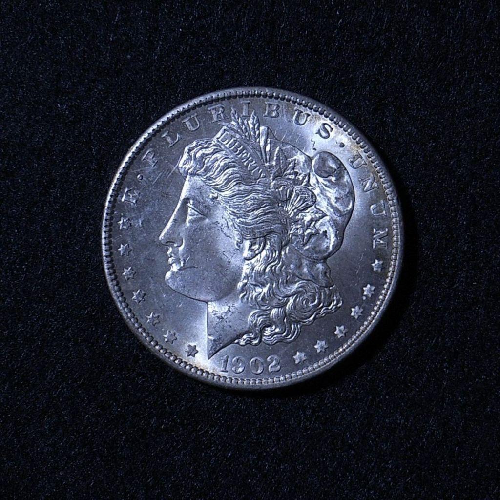 US Morgan Dollar 1902-O obverse
