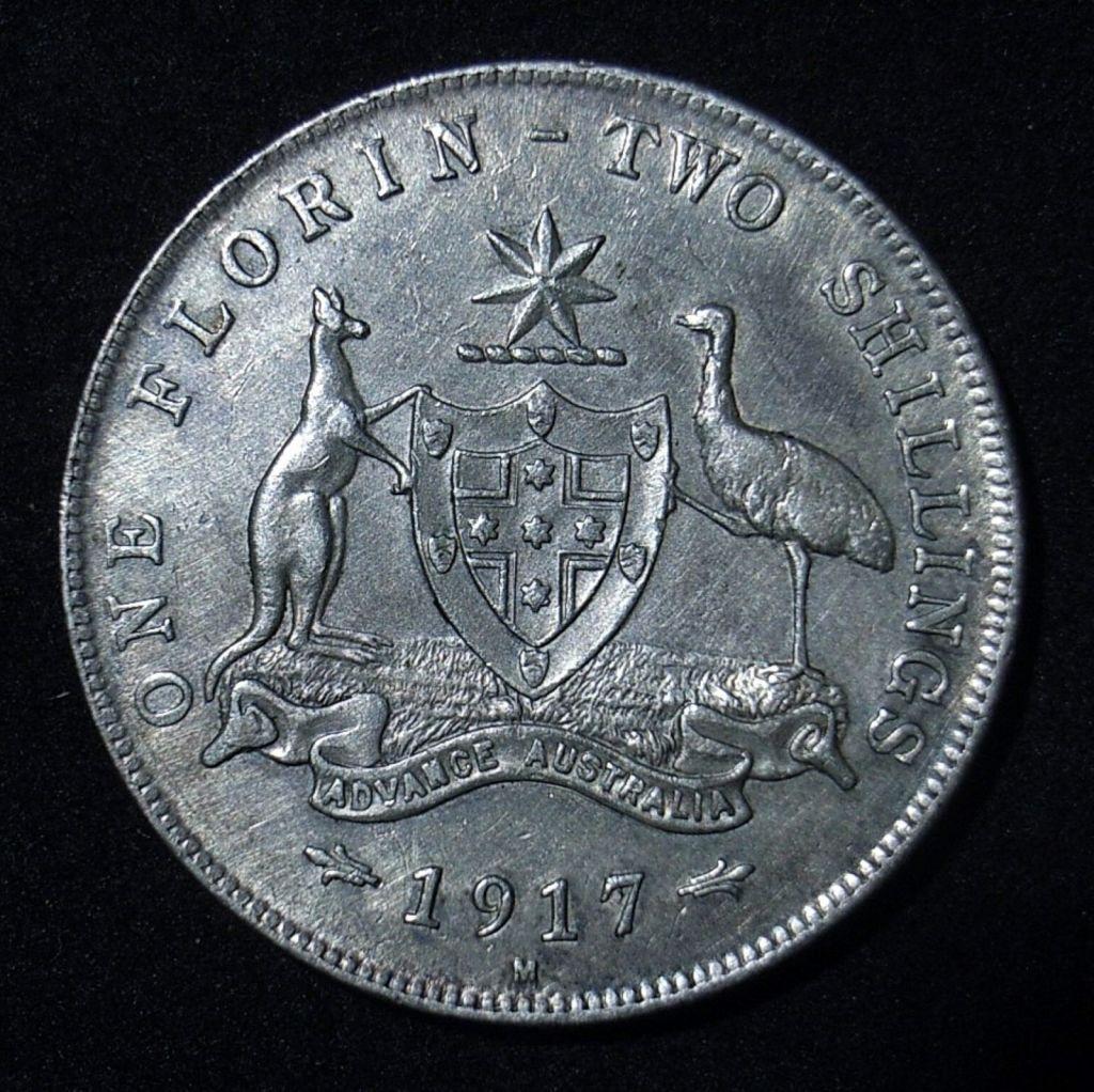 Close up 2 Florin 1917m reverse